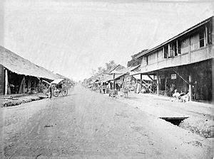 Bibit Rambutan Binjai Blitar kota binjai bahasa indonesia ensiklopedia bebas