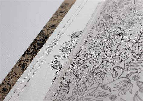 secret garden colouring book angus and robertson why millions of grownups are buying this colouring book