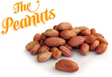 forgetmenot fruits peanuts