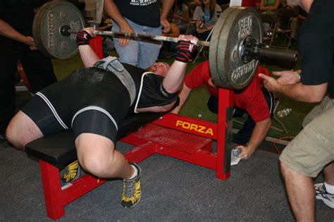 forza bench press for sale forza bench press 28 images forza bench press 100