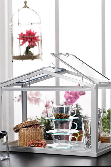 socker greenhouse socker greenhouse indoor outdoor white minis the o