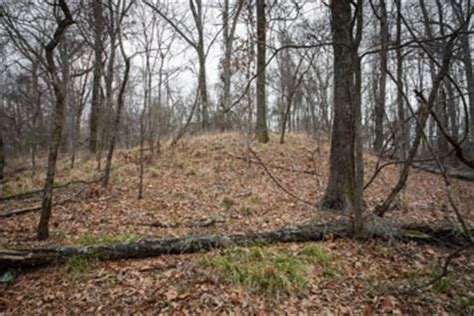 New Alert Mound by Mound F Discovered At Poverty Point Archaeology Magazine