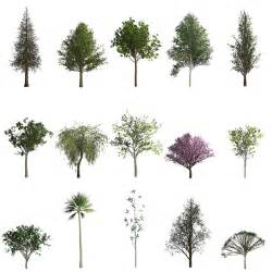 trees types creating trees in photoshop cc 2014 171 julieanne kost s blog