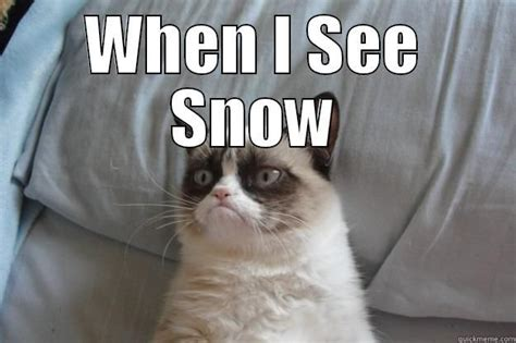 Grumpy Cat Snow Meme - grumpy cat snow meme 28 images let it snow let it snow