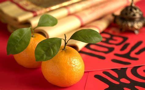 exchange of oranges new year 13 things to do with your mandarin oranges before they go