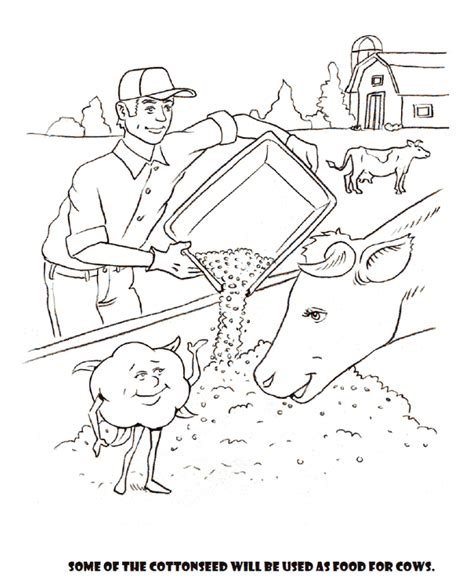 Cotton Coloring Sheets Coloring Pages Cotton Coloring Pages