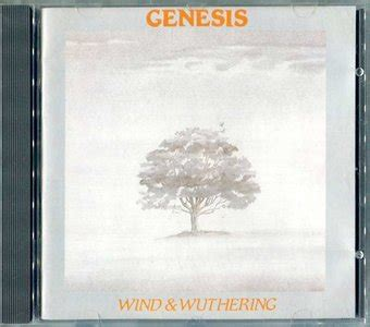 selling by the pound testo genesis studio discography hibiscus hotel siesta key