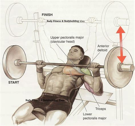 heavy bench press tips chest workout tips and exercise bodybuilding and fitness zone