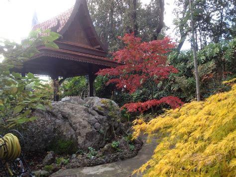 giardini mortella prezzi ischia giardini la mortella al via le visite guidate