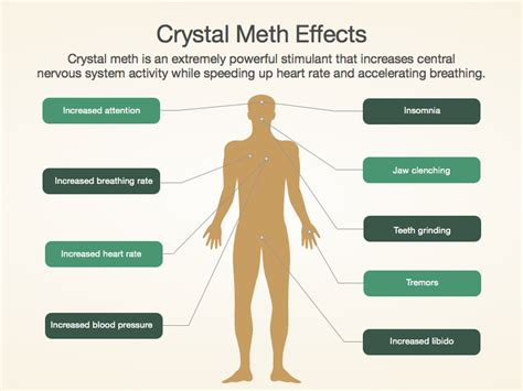 How To Increase Detox Rate Meth by Meth Addiction And Recovery Facts