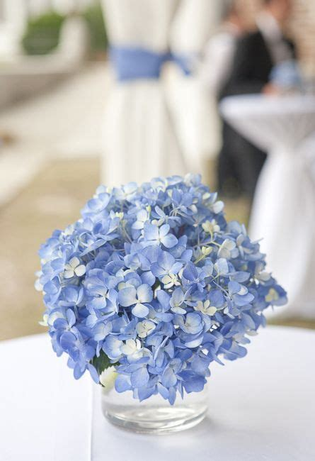blue hydrangea centerpiece blue hydrangea centerpieces wedding and on
