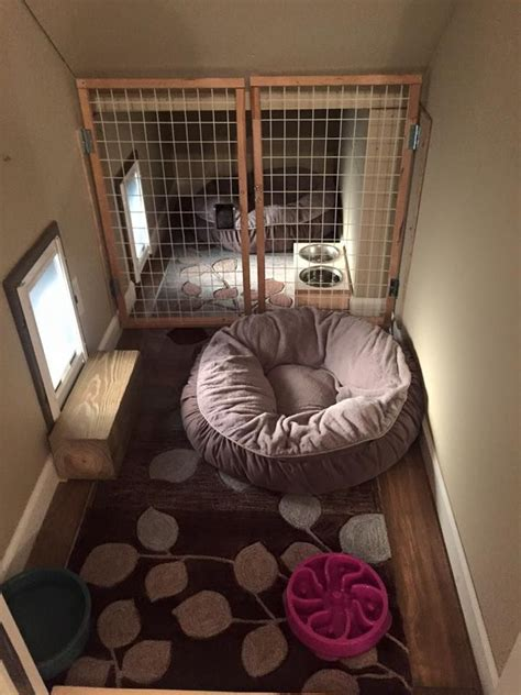 best outdoor dog house the 25 best outdoor dog kennels ideas on pinterest
