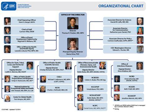 apple organizational structure apple inc organizational chart car interior design