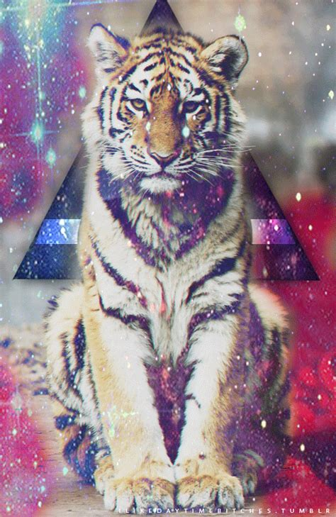 imagenes hipsters art galaxy tiger tumblr