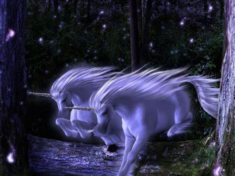 imagenes de unicornios magicos 191 no crees en los cuentos de hadas entra chavo taringa
