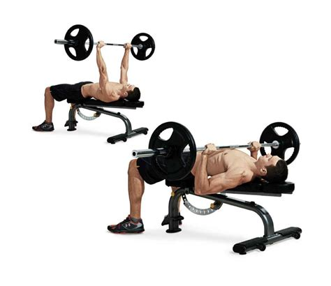 exercise bench press the skinny guy s workout program to build muscle men s