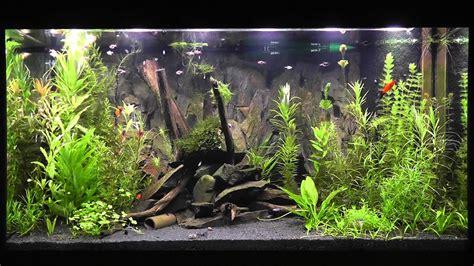 led aquarium beleuchtung daytime cluster control mit