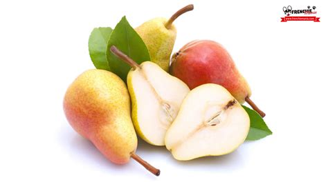 can dogs pears 14 fruits your bulldog will to eat