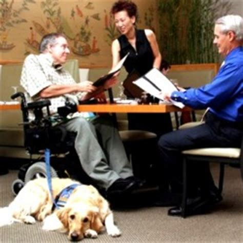 service dogs in restaurants what you need to about service animals national restaurant association