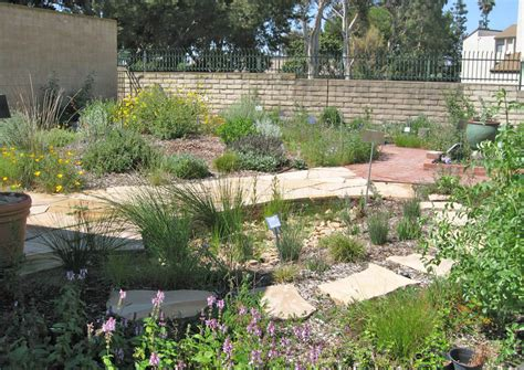 Mother Nature's Backyard   A Water wise Garden: Harvesting