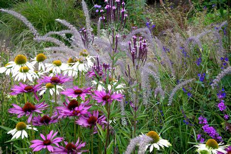 Vaste Planten Border Beplantingsplan by Combineren Met Vaste Planten In De Border Tuinenstruinen Org