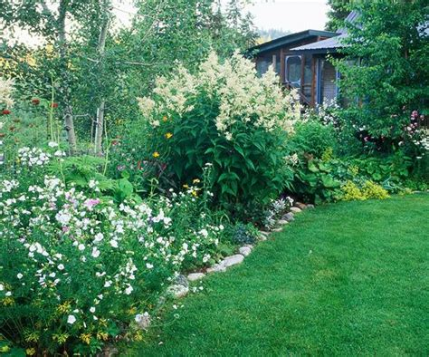 top 28 large border plants top 28 large border plants this is a very large notes from the