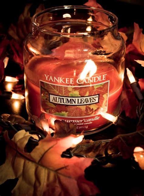 A U T U M N yankee candle absolutely a u t u m n addicted