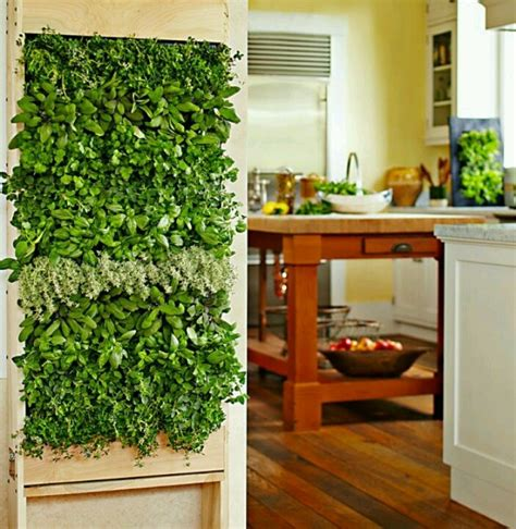 indoor wall garden indoor herb wall diy pinterest indoor herbs and