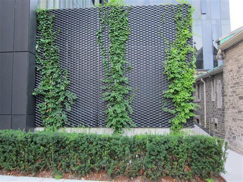 vertical garden maintenance audidatlevante