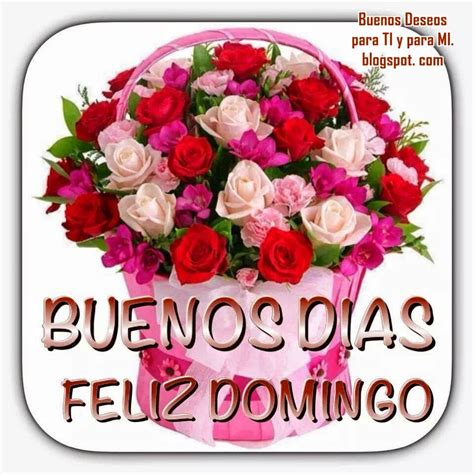 imagenes simpaticas de feliz domingo imagenes de buenos dias feliz domingo pictures to pin on