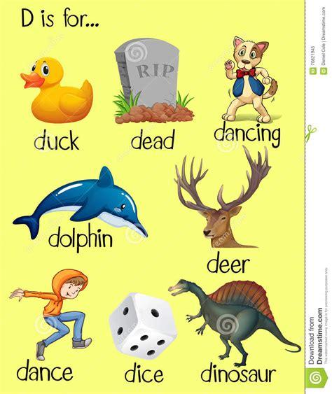 5 Letter Words Beginning With D pictures of things that begin with letter d things that