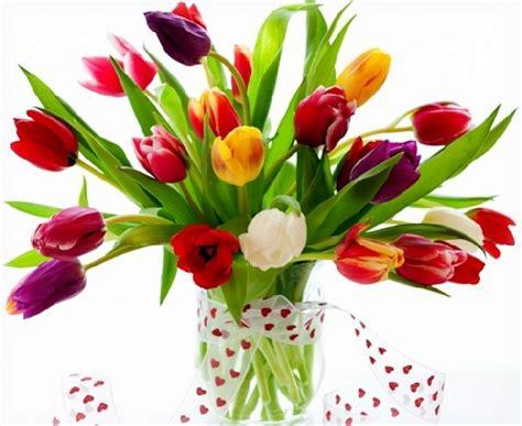 imagenes de amor para regalar imagenes de flores hermosas para regalar a mi amorcito
