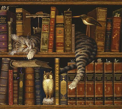 cats and books cat and books el grande pics