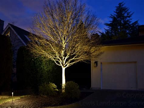 landscape tree lighting lewis landscape services landscape lighting portland oregon outdoor lighting