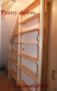 Kitchen Rack Ideas One Corner At A Time Understairs Cupboard Mum On The Brink