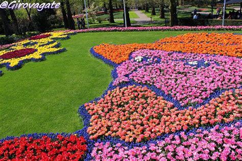 ci di fiori in olanda a keukenhof in bicicletta pedalando tra i ci di