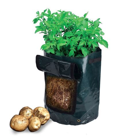 Potato Planterbag potato grow planter bag vegetables garden access flap harvesting patio amgate ebay