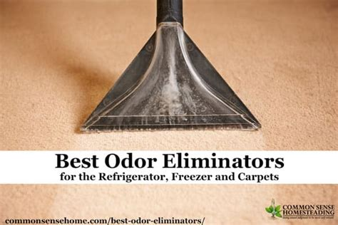 how to get rid of bad odor in house how to get rid of fishy odor in refrigerator best