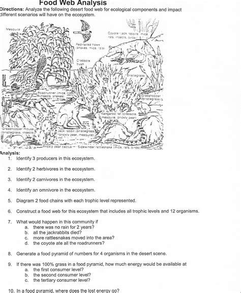 Food Web Worksheet High School by Food Chain Worksheet Middle School Food Chain Worksheets
