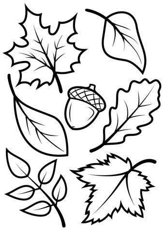 coloring book review the needle drop printable fall coloring pages coloring pages ideas reviews