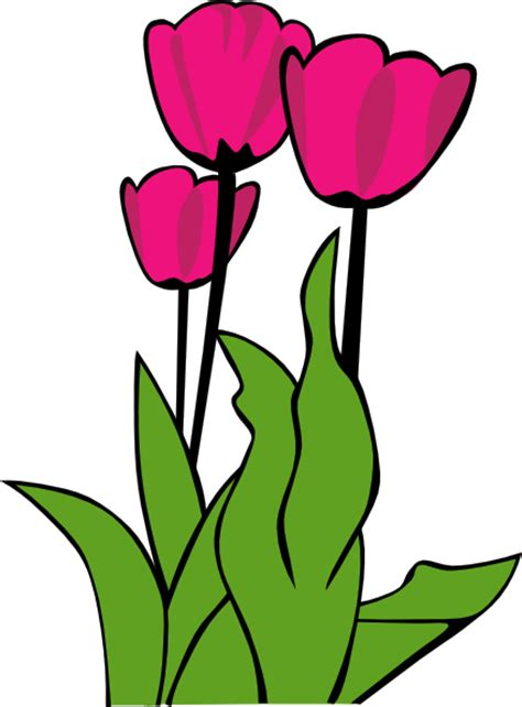 tulips  bloom clip art  clkercom vector clip art