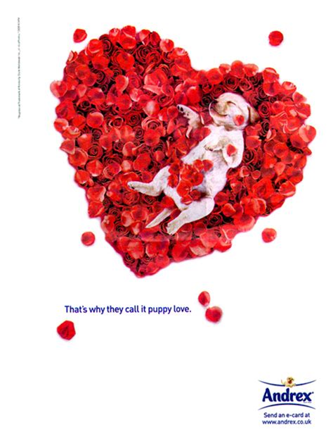 s day ads valentines day ads december 2011