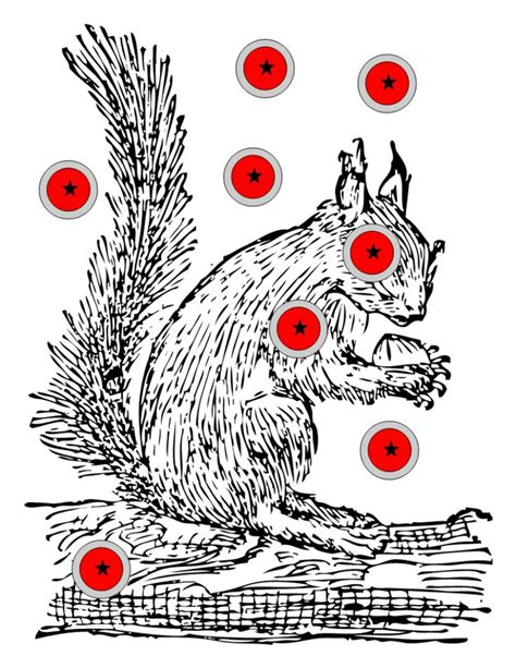 printable shooting targets squirrel 17 best images about printable targets on pinterest