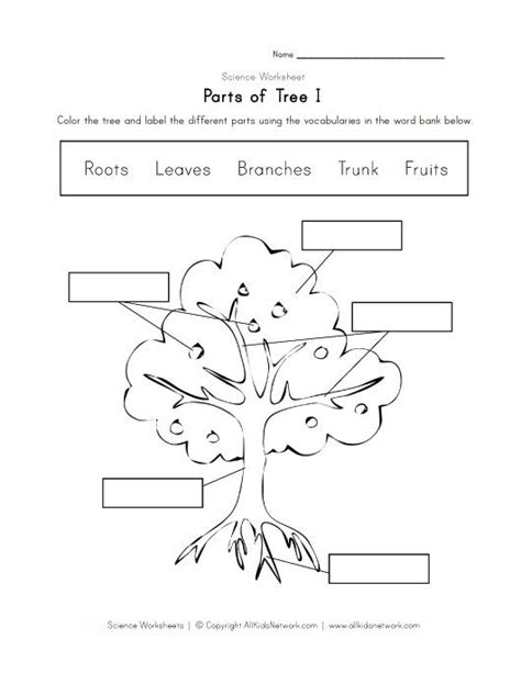 kindergarten activities on plants tree worksheet 시도해 볼 프로젝트 pinterest worksheets