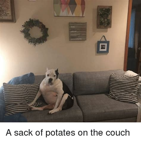 couch sack dventure a sack of potates on the couch couch meme on sizzle