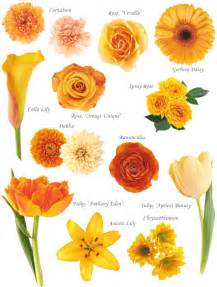 Names Of Orange Colors by Flower Names By Color Hayley S Wedding Tips 101