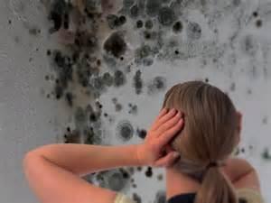 peinture anti humidit 233 224 rennes etancheite produits d