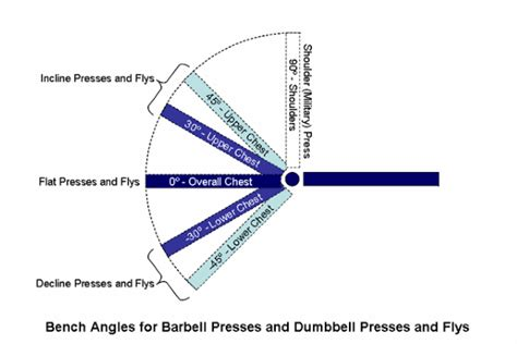 fitness bench angles how does bench angle affect activation