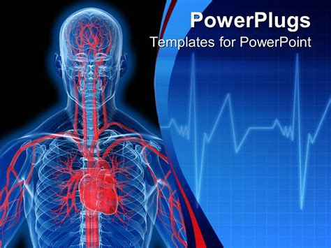 powerpoint template visualization of human anatomy in