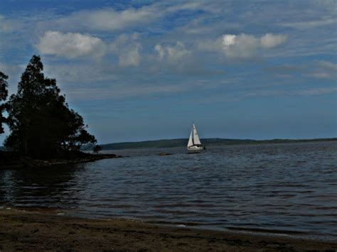 boreen point boat hire australian adventures natural cultural information and